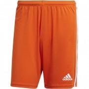 Pantaloncino Calcio Adidas SQUADRA 21 SHORT senza mutanda interna
