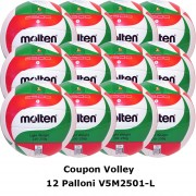 Pallone Volley Molten V5M2501-L Coupon 2020 - Conf. 12 palloni + 1 Spray