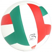 Pallone Volley College